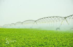 Agro business et autosuffisance alimentaire au BURKINA FASO