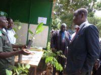 Journées promotionnelles au Centre National de Semences Forestières( CNSF)