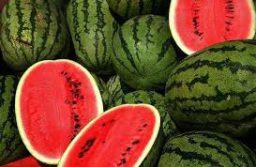 Bienfaits et vertus de la pastèque pour la santé