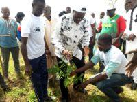 Campagne de reforestation 2018: Les jeunes militants de l'ADF/RDA plus proche des FDS