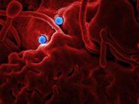Afrique / Coronavirus : Les premiers cas suspects identifiés dans deux pays